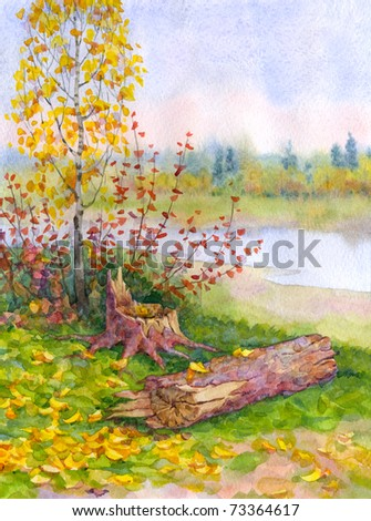 Watercolor landscape. Young autumn birch near a fallen tree on the riverbank