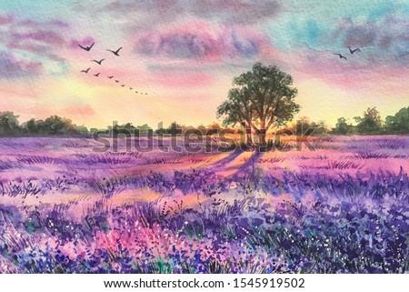Watercolor lavender field. Sunset lavender field. Violet background. France Provence. Spring summer postcard banner. Fragrant flowers. Aroma.