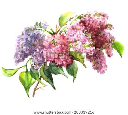 watercolor lilac garland.