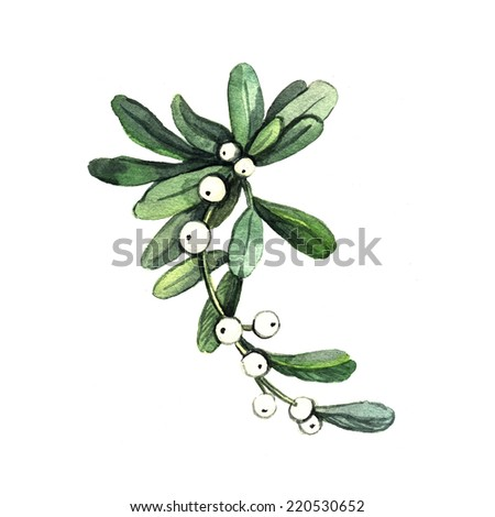 Watercolor Mistletoe. Hand painting. Christmas decor. Ideal for design Christmas gifts  and scrapbooking. Illustration for greeting cards, invitations, and other printing projects.