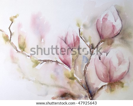 Watercolor of Magnolia flowers