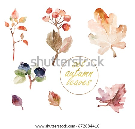 Watercolor ornament with autumn berries and leaves  for wedding invitations, holiday cards, greeting cards, posters, books, envelopes, photo album. Illustration on isolated background.
