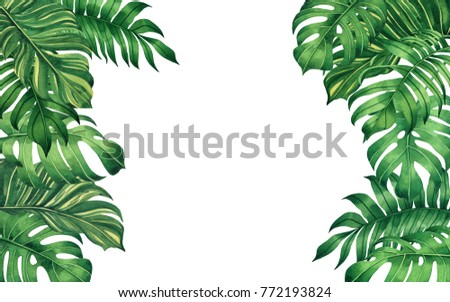 Watercolor painting frame green leaves,palm leaf isolated on white ...