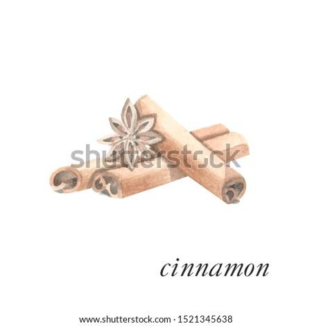 Watercolor painting of cinnamon sticks. Bunch of brown cinnamon sticks and a cinnamon star. Painted cooking ingredient - cinnamon. Aroma herb, aroma sticks.