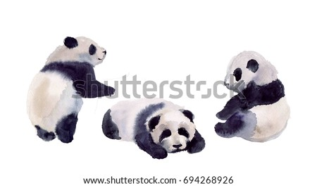 Watercolor panda set. Cute animal illustration on the white background