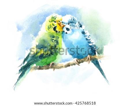 Stock Photo Watercolor Pet Birds Green and Blue Budgerigar Parakeets Hand Drawn Summer Tropical Illustration Budgies