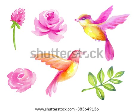 watercolor pink flowers and birds isolated design elements