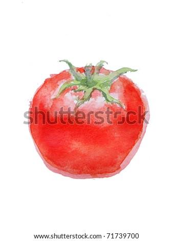 Watercolor red tomato
