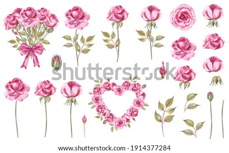 Watercolor rose illustration set: pink roses, bouquet of roses, buds, stems, leaves, pink bow, roses in a shape of heart.