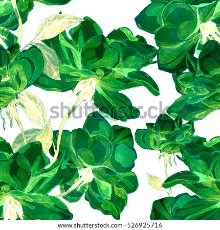 Watercolor rose seamless pattern  #526925716