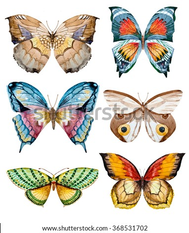 watercolor set butterflies, colorful butterfly, moth