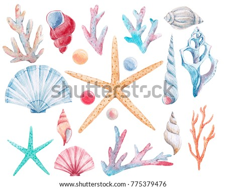 Watercolor set of isolated marine objects, shells and pearl , corals, starfish. Delicate pink-and-blue illustrations