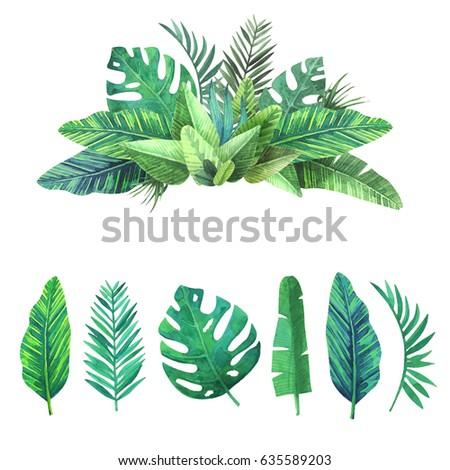 Watercolor set of tropical leaves.