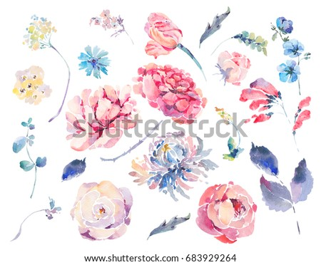 Watercolor set of vintage floral summer natural elements. Roses, chrysanthemums, wildflowers, botanical nature collection isolated on white background.