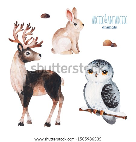 Watercolor set with cute reindeer,snowy owl and rabbit .Cartoon arctic and antarctic animals.Perfect for your project,print,scrapbook,baby shower,Birthday card,invitations,greeting card and much more.
