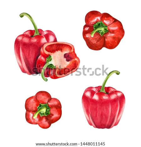 Watercolor set with isolated riped red paprika. Vegetarian food. Eco friendly. Vegetables clipart. Healthy food