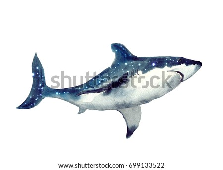 watercolor shark on the white background. Watercolor shark sketch. Beautiful kids illustration. Illustration isolated on white background for design,print or background.