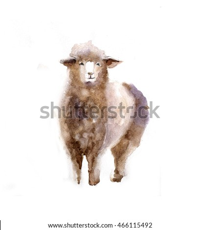 Watercolor sheep, hand drawn cute illustration. Creative farm animals. Background for Muslim Community, Festival of Sacrifice, Eid-Al-Adha Mubarak. Tee-shirt graphic