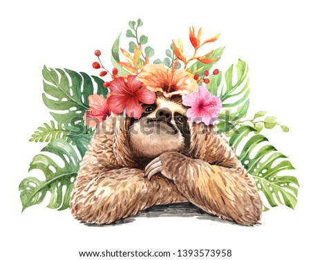 Watercolor sloth illustration. Tropical animal. Watercolor flower tropical drawing, hello summer. Baby shower card layer path, clipping path isolated on white background.