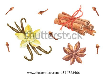 Watercolor spices set isolated on white background