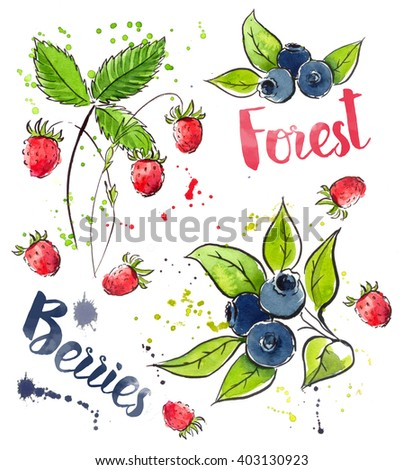watercolor  Strawberry mix , wreath, flower, branch with berries,