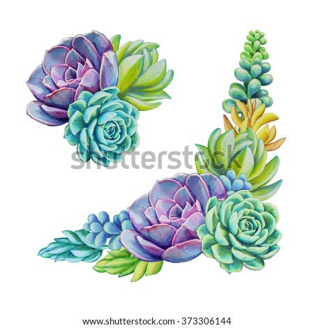 watercolor succulent plants composition set, floral bouquet illustration, isolated on white background