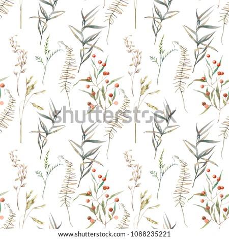 watercolor summer field herbs...