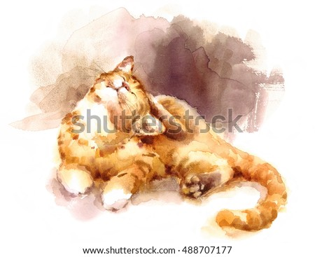 Watercolor Tabby Cat Laying Down Scratching Its Head Hand Painted Pet Portrait Illustration