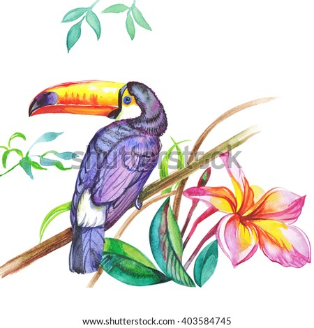 Watercolor toucan bird  pattern with lily flowers.