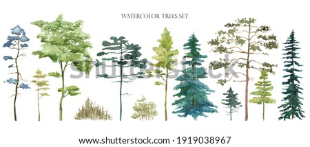 Watercolor tree set. Green pine, blue spruce, lush ash, beige bush