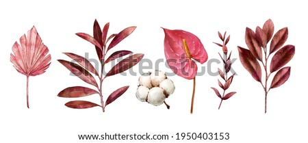 Watercolor tropical clipart with leaves, anthurium flower, dry flora, cotton. Exotic set of natural leaves and flowers. Hand painted watercolor. Botanical hand drawn illustration Stock foto ©