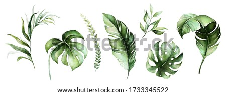 Watercolor tropical floral illustration set with green fern, banana, palm leaves for wedding stationary, greetings, wallpapers, fashion, backgrounds, textures, DIY, wrappers, postcards, logo, etc.