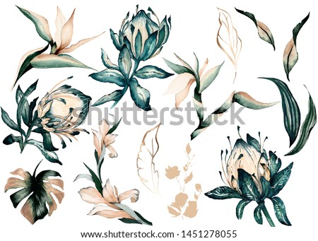 Watercolor Tropical Flower and Leaf Illustration For patterns and decorative products