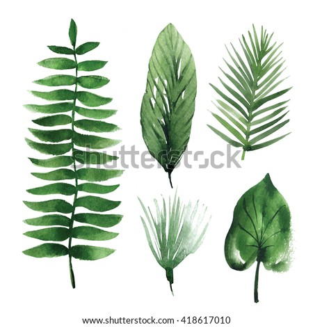 Watercolor tropical leaves #418617010