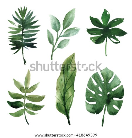 watercolor tropical leaves #418649599