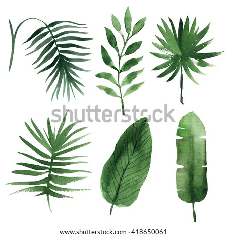 watercolor tropical leaves - Shutterstock ID 418650061