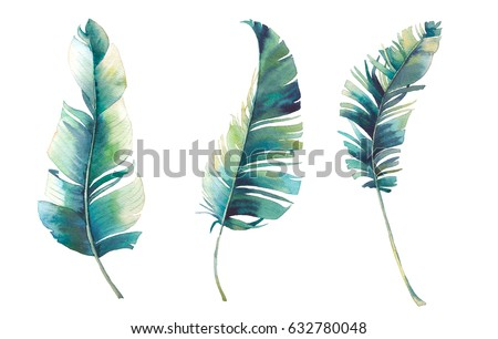 Watercolor tropical leaves set. Hand painted three exotic banana green branches isolated on white background. Botanical clip art. Summer plants illustration