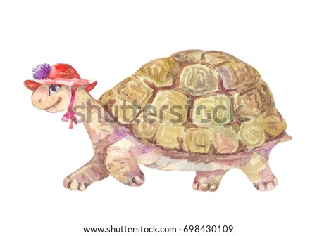 watercolor turtle, illustration isolated on white.