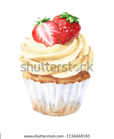 Watercolor vanilla cupcake with strawberries, hand drawn delicious food illustration, isolated on white background.