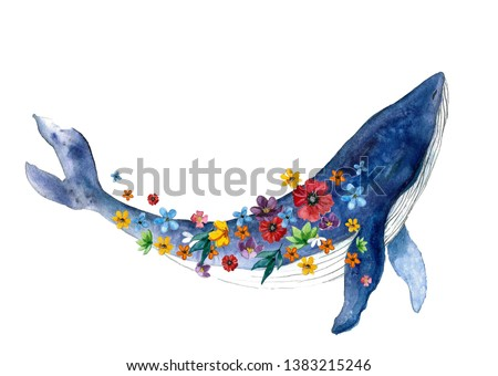 Watercolor whale hand painted illustration isolated on white background. Realistic underwater animal art.