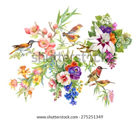 watercolor wild exotic birds on ...