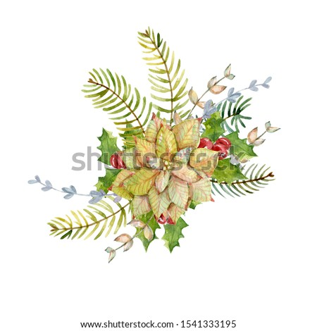 Watercolor winter bouquet with poinsettia, holly leaves, holly berries,  fir branches. Christmas design. New year composition.