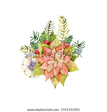 Watercolor winter bouquet with poinsettia, holly leaves, holly berries, stars, fir branches and anemone. Christmas design. New year composition.