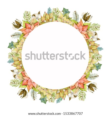 Watercolor winter round frame made of poinsettia, fir branches, holly leaves, holly berries, cotton on a white background. Christmas card. Winter watercolor wreath