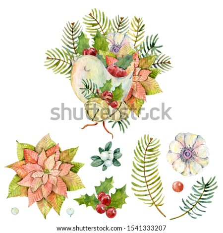 Watercolor winter set with bouquet of poinsettia, Christmas bird, christmas bells, holly leaves, holly berries, fir branches, anemone, mistletoe. Christmas design. New year composition.