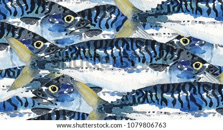 Watercolour Painting illustration of a school of mackerel fish