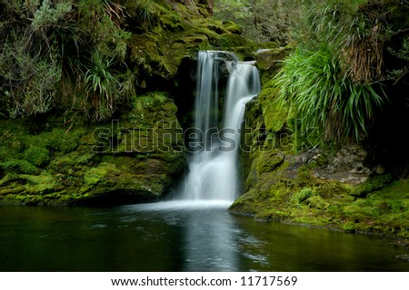 Waterfall and green vegetation on Overland Track, Tasmania, Australia