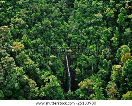 waterfall at tropical forest, top view