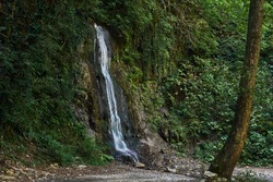 waterfall flows down from vegetated rocks in mountain rainforest
