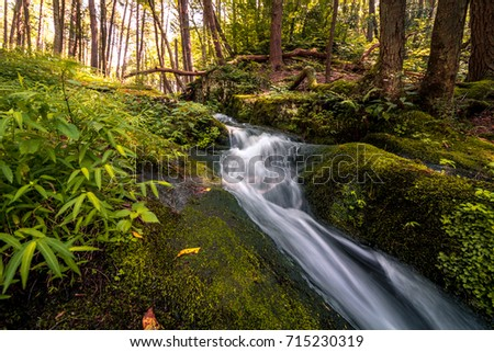 waterfall flows gently amoung a ...